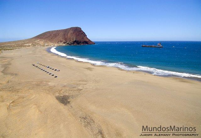 Playa La Tejita, la sud de El Medano, în dreptul aeroportului Sur. Cred că-i cea mai lungă plajă din Tenerife. Sălbatică, vizitată şi de nudişti care se amestecă de multe ori cu ne-nudiştii