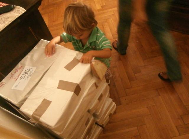 Yago a simțit solemnitatea momentului și s-a cățărat pe pachetele de cărți